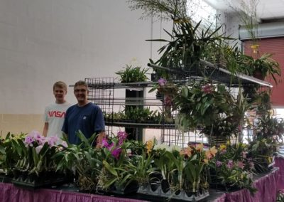 Florida SunCoast Orchids